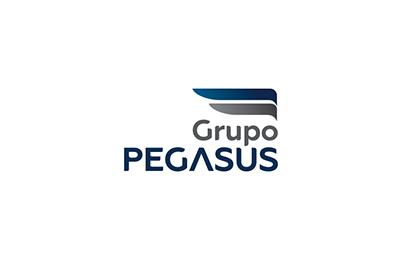 Grupo Pegasus
